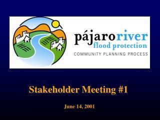Stakeholder Meeting 1