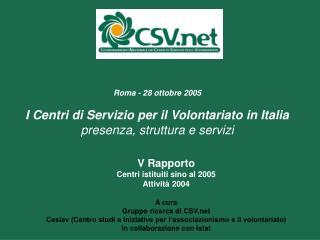 V Rapporto Centri istituiti sino al 2005 Attività 2004 A cura Gruppo ricerca di CSV