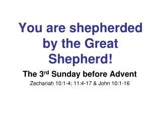 You are shepherded by the Great Shepherd!