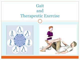 Gait  and  Therapeutic Exercise