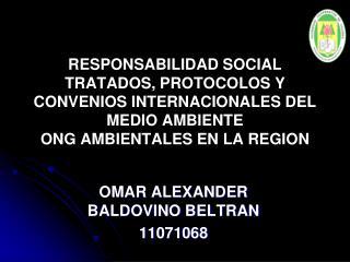 OMAR ALEXANDER BALDOVINO BELTRAN 11071068