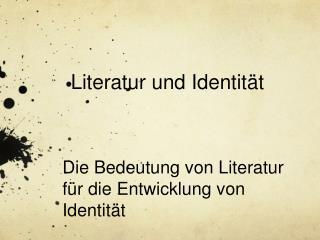 Literatur und Identit t