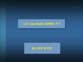 사례 : Coal Boiler SUPEX  추구