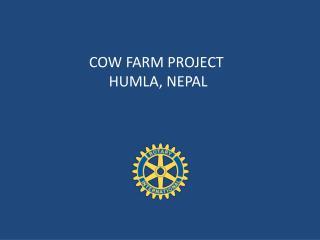 COW FARM PROJECT  HUMLA, NEPAL