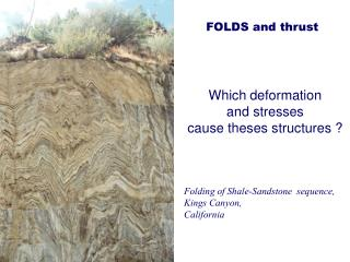 Which deformation and stresses  cause theses structures ?