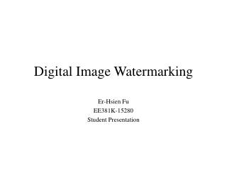 Digital Image Watermarking