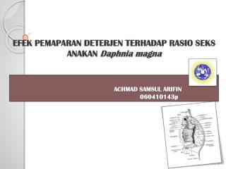 ACHMAD SAMSUL ARIFIN 060410143p