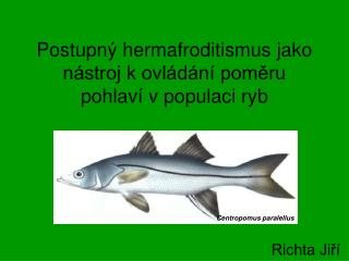 Postupný hermafroditismus jako nástroj k ovládání poměru pohlaví v populaci ryb