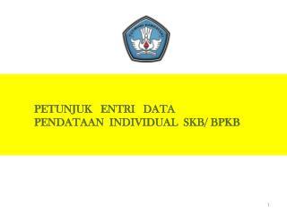 PETUNJUK   ENTRI   DATA PENDATAAN  INDIVIDUAL  SKB/ BPKB
