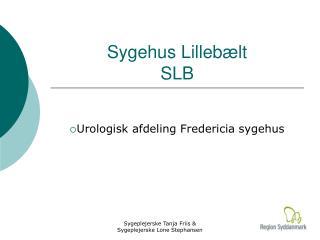 Sygehus Lillebælt SLB