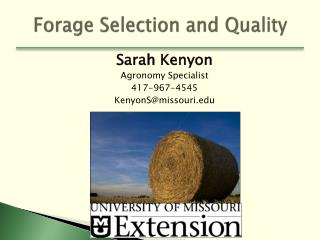 Forage Selection and Quality
