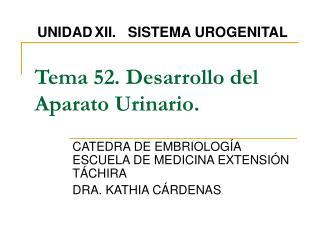 Tema 52. Desarrollo del Aparato Urinario.