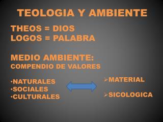 TEOLOGIA Y AMBIENTE