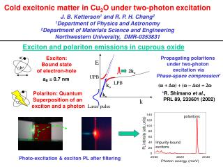 Cold excitonic matter in Cu 2 O under two-photon excitation