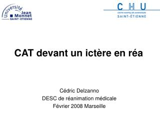 CAT devant un ict�re en r�a