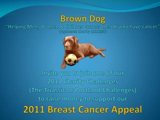 Brown Dog  Helping Men, Women  Children across the UK who have cancer  registered Charity 1111550