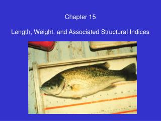 Chapter 15  Length, Weight, and Associated Structural Indices