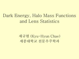 Dark Energy, Halo Mass Functions and Lens Statistics