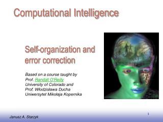 Self-organization and error correction