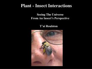Plant - Insect Interactions     Seeing The Universe      From An Insect's Perspective