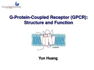 G-Protein-Coupled Receptor (GPCR): Structure and Function