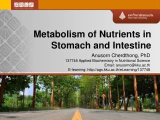 Metabolism of Nutrients in Stomach and Intestine