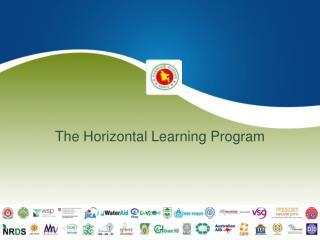 The Horizontal Learning Program
