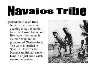 Navajos Tribe