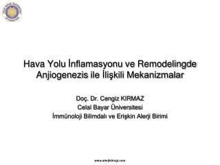 Hava Yolu  İnflamasyonu  ve  Remodelingde Anjiogenezis  ile İlişkili Mekanizmalar