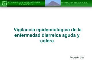 Vigilancia epidemiológica de la enfermedad diarreica aguda y cólera