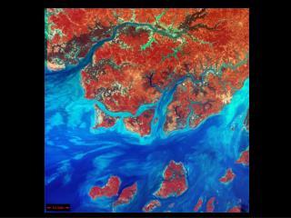 Členění zemského povrchu