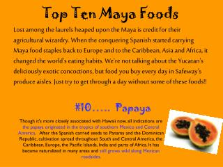 Top Ten Maya Foods