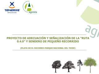 """Documento  """" Diagn óstico  de posibilidades"""" r edactado segundo semestre 2012"""