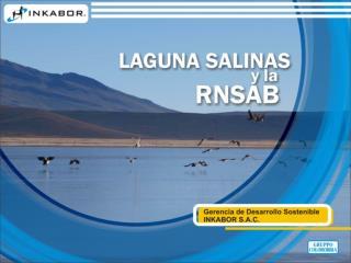 INFORMACION GENERAL  LAGUNA SALINAS