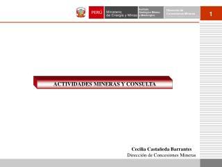 ACTIVIDADES MINERAS Y CONSULTA