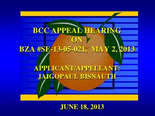 BCC APPEAL HEARING ON BZA #SE-13-05-021,  MAY 2, 2013 APPLICANT/APPELLANT:  JAIGOPAUL BISNAUTH