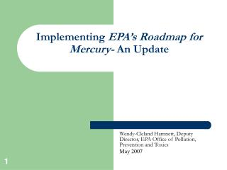 Implementing EPA s Roadmap for Mercury- An Update