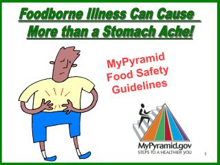 MyPyramid  Food Safety Guidelines