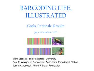 BARCODING LIFE, ILLUSTRATED  Goals, Rationale, Results  ppt v1.0 March 30, 2005