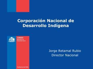 Jorge Retamal Rubio Director Nacional