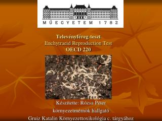 Telev�nyf�reg-teszt Enchytraeid Reproduction  Test  OECD 220