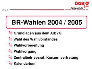 BR-Wahlen 2004