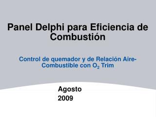 Panel Delphi para Eficiencia de Combusti n  Control de quemador y de Relaci n Aire-Combustible con O2 Trim