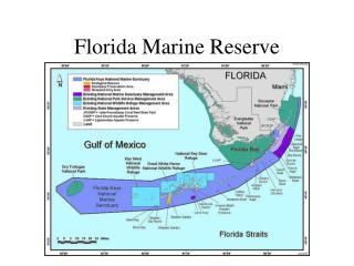 Florida Marine Reserve