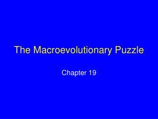 The Macroevolutionary Puzzle