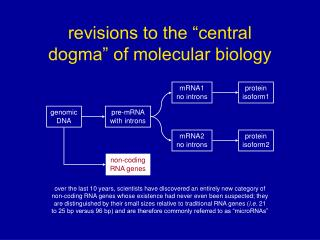 "revisions to the ""central       dogma"" of molecular biology"