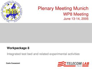 Workpackage 8  Integrated test bed and related experimental activities