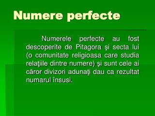 Numere perfecte