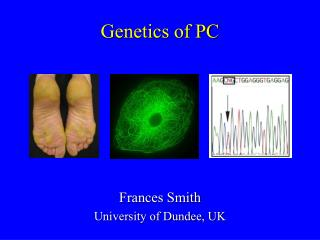 Genetics of PC