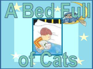 A Bed Full  of Cats